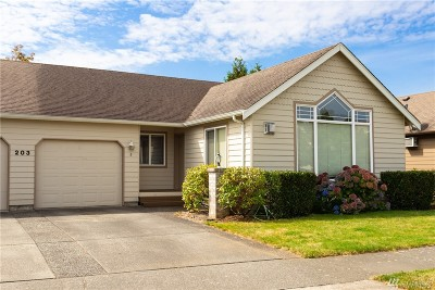 Lynden Condo/Townhouse Pending Inspection: 203 W Maberry Dr #B