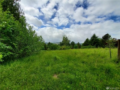 Grays Harbor County Residential Lots & Land For Sale: 5997 Us Hwy 12