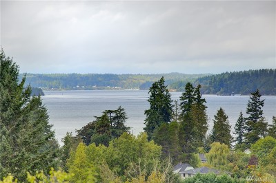 Steilacoom Single Family Home For Sale: 902 Rowell St