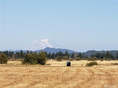 Olympia Residential Lots & Land For Sale: 183rd Ave SW