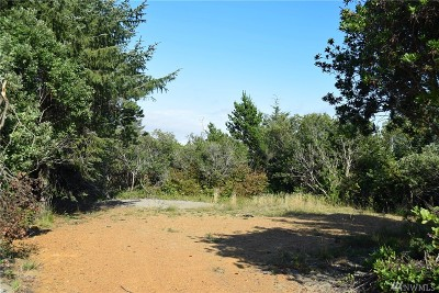 Grays Harbor County Residential Lots & Land For Sale: 380 S Wynoochee Dr