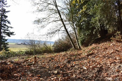 Stanwood Residential Lots & Land For Sale: 2821 Pioneer Hwy