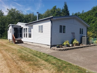 Grays Harbor County Single Family Home For Sale: 92 Evergreen Lane