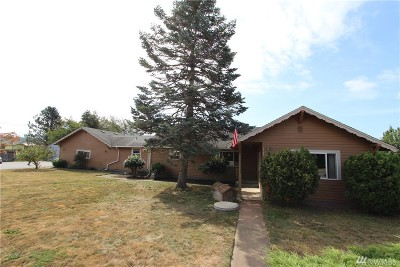 Ferndale Single Family Home For Sale: 1595 Main St