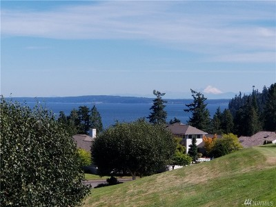 Port Ludlow WA Single Family Home For Sale: $450,000