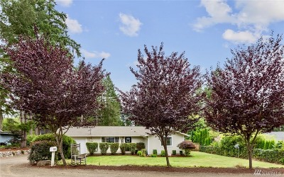 Gig Harbor Single Family Home For Sale: 13412 137th St NW