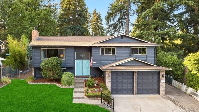 Bothell Single Family Home For Sale: 1131 202nd St SE