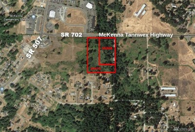 Pierce County Residential Lots & Land For Sale: 35208 88th Ave S