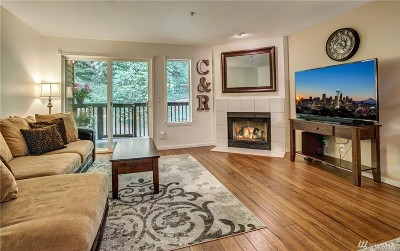 Issaquah Condo/Townhouse For Sale: 515 Newport Wy NW #B2