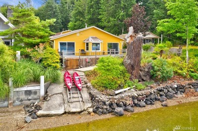 Gig Harbor Single Family Home For Sale: 3890 E State Route 302