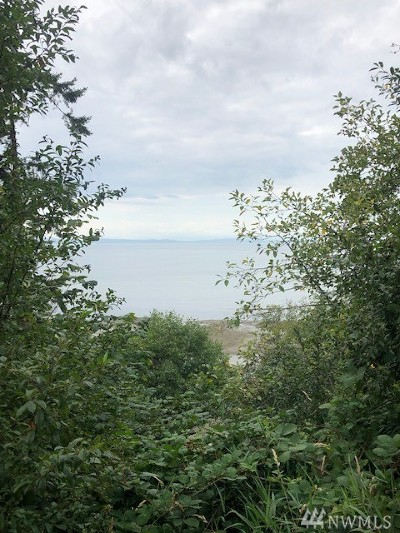 Point Roberts WA Residential Lots & Land For Sale: $795,000