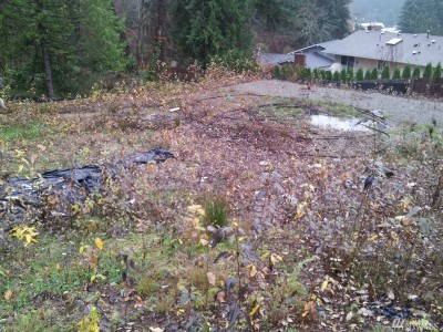 Bellevue Residential Lots & Land For Sale: 1516 175th Place NE