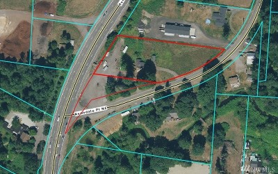 Redmond Single Family Home For Sale: 11831 Avondale Place NE