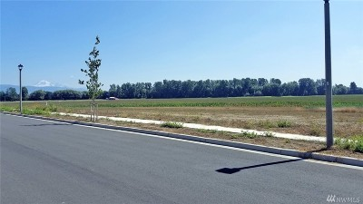 Lynden Residential Lots & Land For Sale: 1709 Farmview Terr