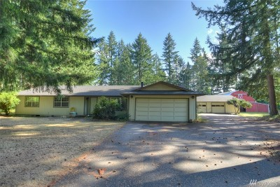 Olympia Single Family Home For Sale: 3841 77th Ave SE