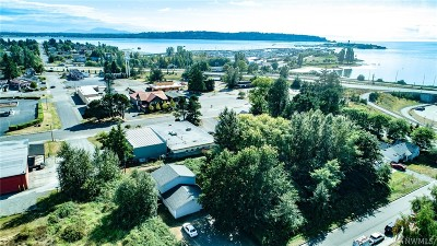 Blaine Multi Family Home For Sale: 289 B St