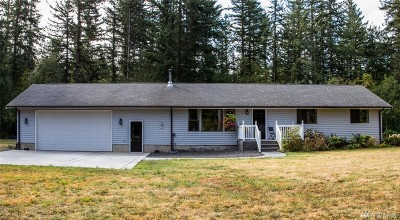 Everson Single Family Home For Sale: 3691 Alm Rd
