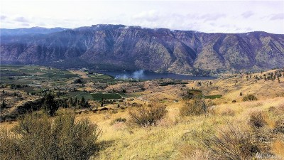 Chelan, Chelan Falls, Entiat, Manson, Brewster, Bridgeport, Orondo Residential Lots & Land For Sale: 780 Kinsey Rd