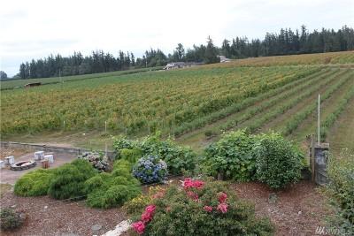Lynden Farm For Sale: 827 Birch Bay Lynden Rd