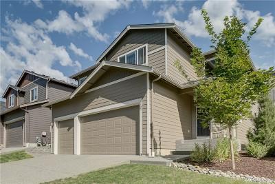 Marysville Single Family Home For Sale: 5125 79th Ave NE