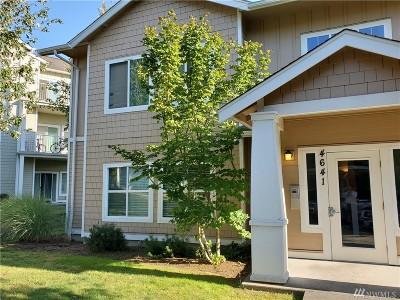 Bellingham Condo/Townhouse For Sale: 4641 Celia Wy #101