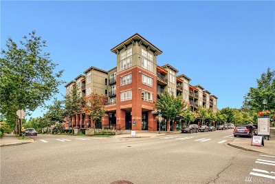 Issaquah Condo/Townhouse For Sale: 1886 25th Ave NE #101