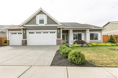Skagit County Single Family Home For Sale: 3051 Pine Creek Dr
