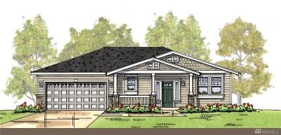 Skagit County Single Family Home For Sale: 1602 Latitude Cir
