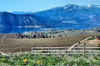 Chelan, Chelan Falls, Entiat, Manson, Brewster, Bridgeport, Orondo Residential Lots & Land For Sale: 120 Pine View Dr
