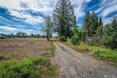 Everson Residential Lots & Land For Sale: 2753 E Badger Rd