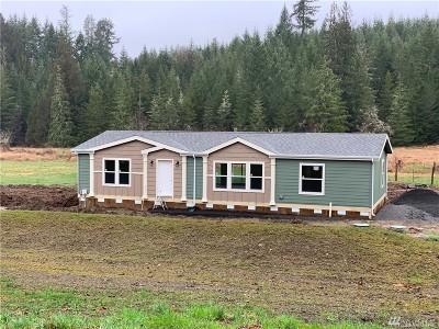 Centralia Single Family Home For Sale: 247 Reinke Rd