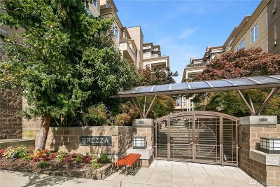 Kirkland Condo/Townhouse For Sale: 225 4th Ave #A401