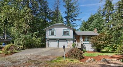 North Bend Single Family Home For Sale: 17445 426th Ave SE