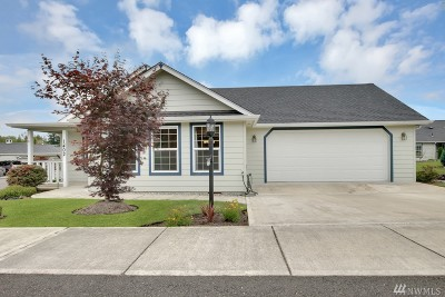 Centralia Single Family Home For Sale: 1402 Stillwaters Ave