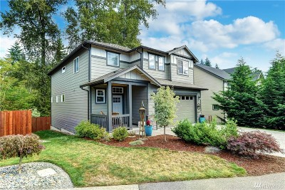 Lake Stevens Single Family Home For Sale: 607 Rhodora Heights Rd