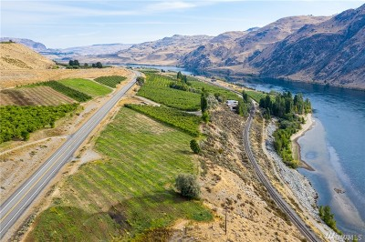 Chelan County, Douglas County Single Family Home For Sale: 355 Hwy 97 Hwy