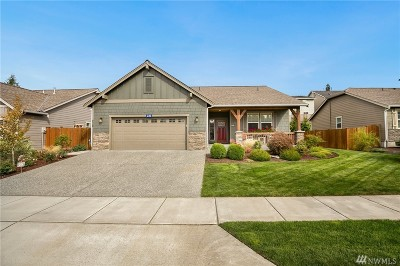 Skagit County Single Family Home For Sale: 230 Twin Brooks Dr