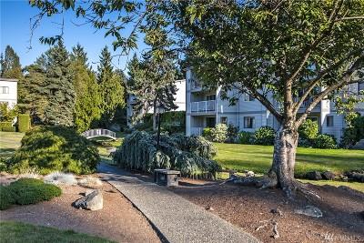 Seattle Condo/Townhouse For Sale: 13297 15th Ave NE #E2