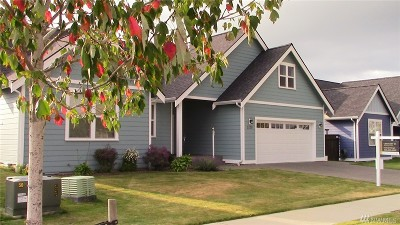 Lynden Single Family Home For Sale: 2129 Fescue St