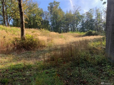 Blaine Residential Lots & Land For Sale: 34th Crest
