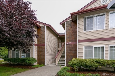 Whatcom County Condo/Townhouse For Sale: 647 W Horton Wy #235