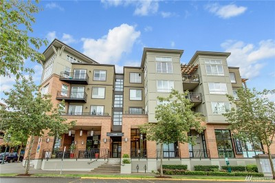 Issaquah Condo/Townhouse For Sale: 1840 25th Ave NE #205