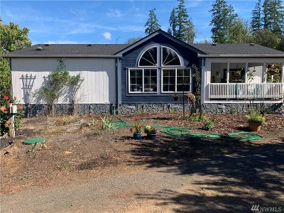 Chehalis Single Family Home For Sale: 3819 State Route 6