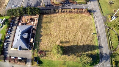 Ferndale Residential Lots & Land For Sale: 1635 Main St
