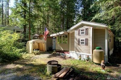 Deming Single Family Home For Sale: 137 Jasper Trail