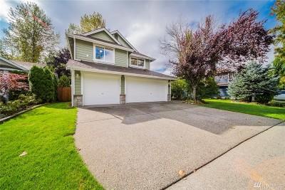 Lake Stevens Single Family Home For Sale: 3113 Catherine Dr