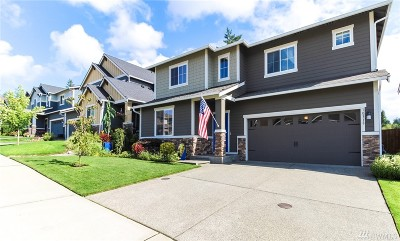 Pierce County Single Family Home For Sale: 10319 Driftwood Ave