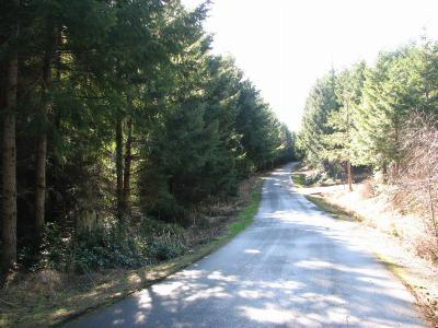 Residential Lots & Land For Sale: 7540 152nd Lane SE