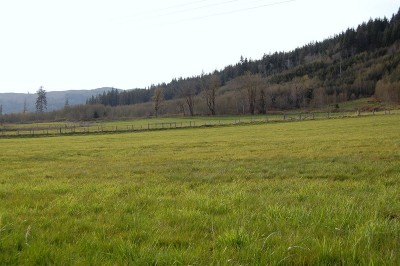 Beaver Residential Lots & Land For Sale: 9999 Hwy 101 W