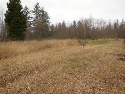 Whatcom County Residential Lots & Land For Sale: 4190 Pipeline Rd